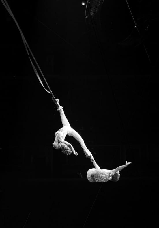 aeralists Cirque