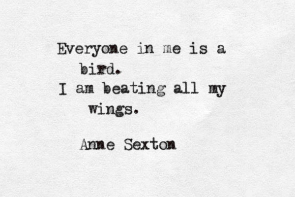bird poem anne sexton