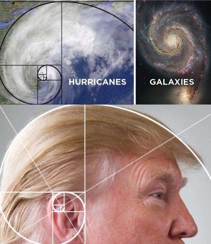 Donald Trump hair golden mean*
