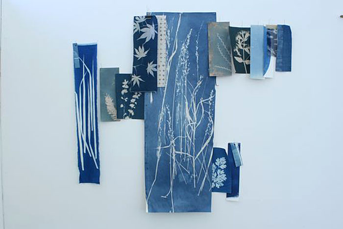 collage of photograms