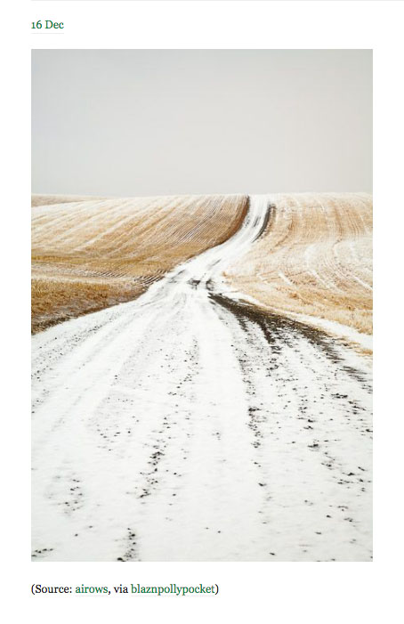 ocean vuong snowy road